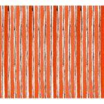 水彩で描いた七味をイメージした模様のパッケージイラスト