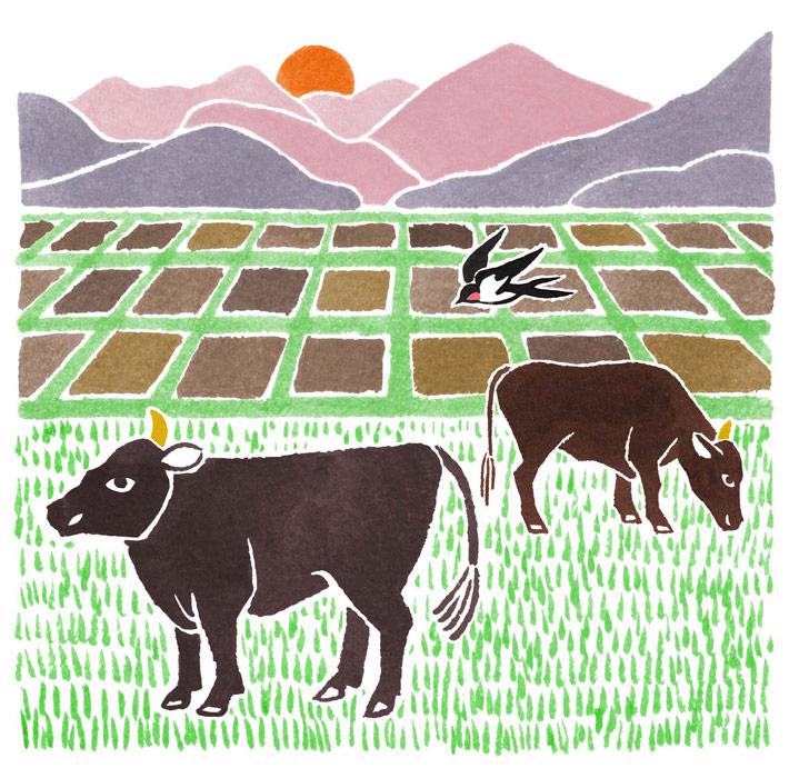 山形おきたま米の風景の水彩イラスト
