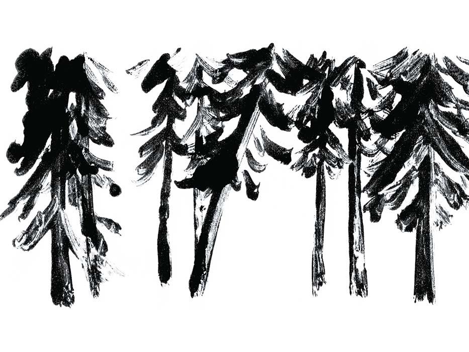 HESTRAのドローイングイラストの林