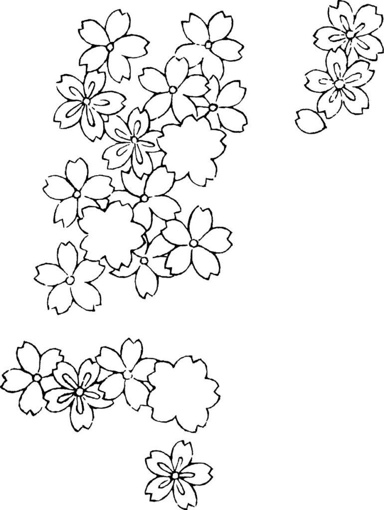 桜のモノトーンのドローイング