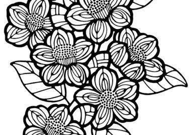 モノトーンの椿の花イラスト