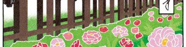 奈良長谷寺の牡丹の風景イラスト