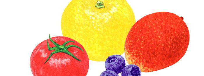 フルーツ水彩イラスト