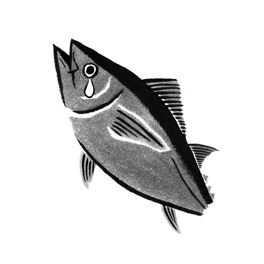 danchuに寄稿した水墨画の魚のイラストのマグロ