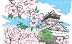 福岡県小倉城の花見イラスト