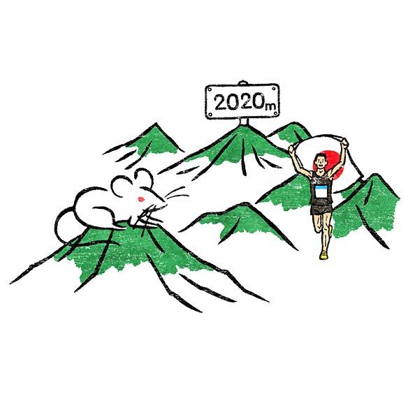 今年の山の浮世絵風イラスト