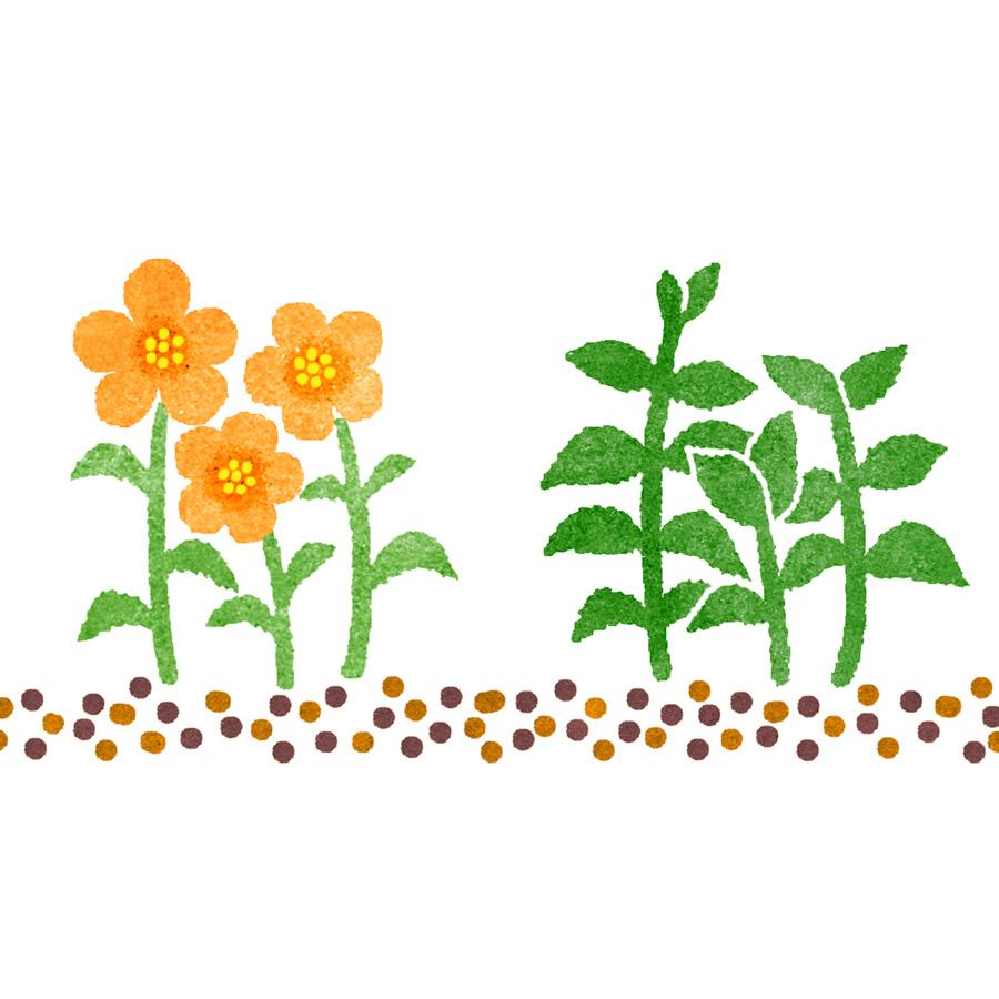 水彩風の花イラスト