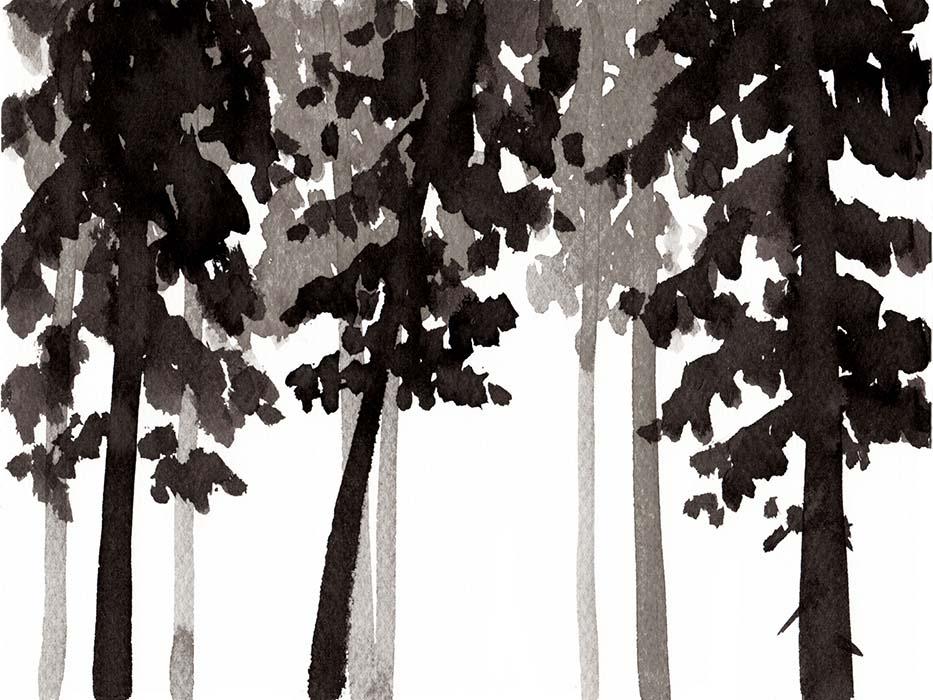 HESTRAの水彩ドローイングイラストの林