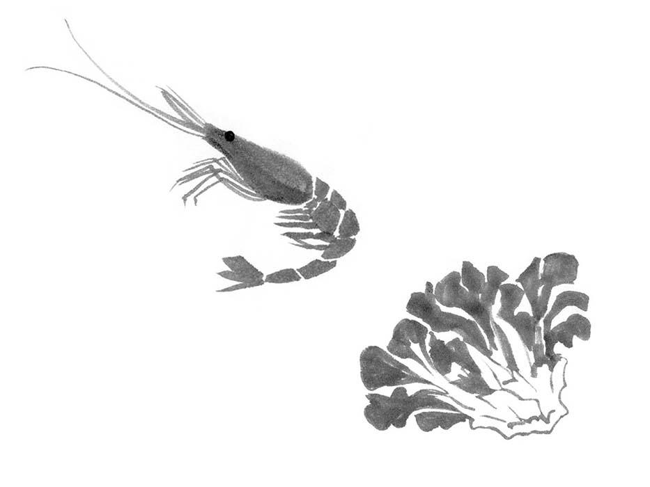 海老と舞茸の水墨画風イラスト